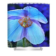 Aglow In Blue Wide View Shower Curtain