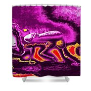 Agreeable Desire In Red And Pink Shower Curtain