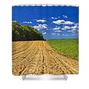 Agricultural Landscape - Young Corn Field Shower Curtain