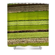 Agriculture Layers Fields And Meadows Shower Curtain