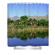 Agua Caliente Shower Curtain