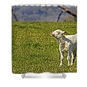 Ahhhh Spring Is Here Shower Curtain