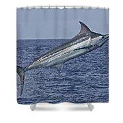 Air Borne Shower Curtain