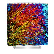 Air Plant On Fire Shower Curtain
