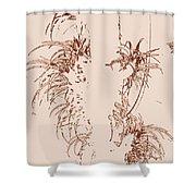 Air Plants In Sepia Shower Curtain