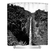 Akaka Falls - Bw Shower Curtain