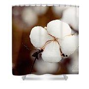 Alabama Cotton Shower Curtain
