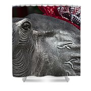 Alabama Crimson Tide Football Mascot Shower Curtain