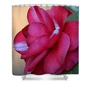 Alabama State Flower Shower Curtain
