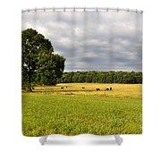 Alabama Valley Shower Curtain