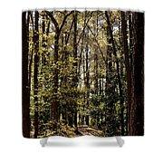 Alabama Woodlands In Spring 2013 Shower Curtain
