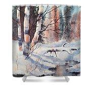 Alaska Birch II Shower Curtain