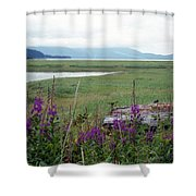 Alaska - Juneau Wetlands Shower Curtain