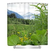 Alaskan Glacier Beauty Shower Curtain