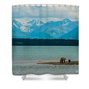 Alaskan Grizzly And Spring Cub Shower Curtain