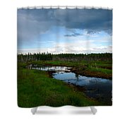 Alaskan Moose 3 Shower Curtain
