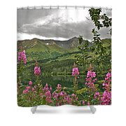 Alaskan Summer Shower Curtain