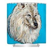 Alaskan White Wolf Original Forsale Shower Curtain