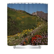 Albion Basin Summer Shower Curtain
