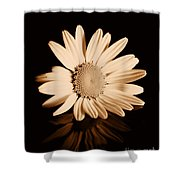 Albumen Daisy Shower Curtain