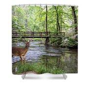 Alert Deer By Bridge In Cades Cove Shower Curtain