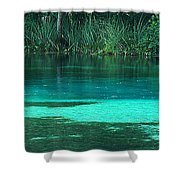 Alexander Springs In The Morning Shower Curtain