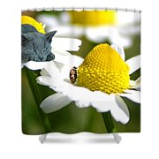 Alice In Wonderland Syndrome Shower Curtain