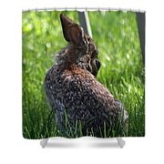 Alien Bunny Shower Curtain