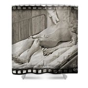 Alien Fan Art Shower Curtain