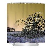Alien Landscape 2 Shower Curtain