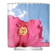 Blissful 33 Shower Curtain