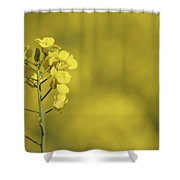 All Across The Land 6 Shower Curtain