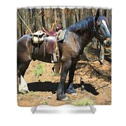 All Geared Up Shower Curtain