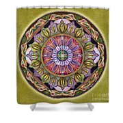 All Is Well Mandala Shower Curtain