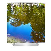 All Pond Treeflection Shower Curtain