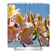 All Stages Of Bloom Shower Curtain