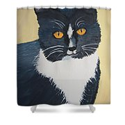 All Sweetness Shower Curtain