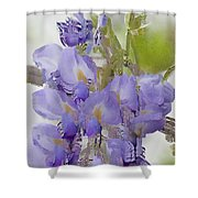 All The Flower Petals In This World 7 Shower Curtain
