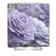 All The Lavender Roses Shower Curtain
