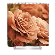 All The Orange Roses Shower Curtain