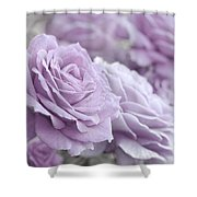 All The Soft Violet Roses Shower Curtain