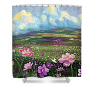 All Things Shower Curtain