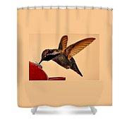 Allen Hummingbird In Flight At Feeder Shower Curtain