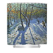 Allestree Park Woods November Shower Curtain by Andrew Macara
