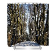 Alley In The Snow Shower Curtain