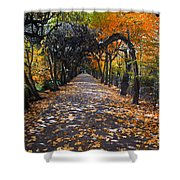 Alley With Falling Leaves In Fall Park Shower Curtain
