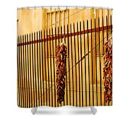 Alleys Of Taos Shower Curtain
