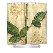 Allie's Rose Sonata 1 Shower Curtain by Debbie DeWitt