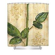 Allie's Rose Sonata 1 Shower Curtain by Debbie DeWitt