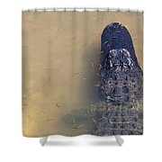 Alligator And Fishes Shower Curtain